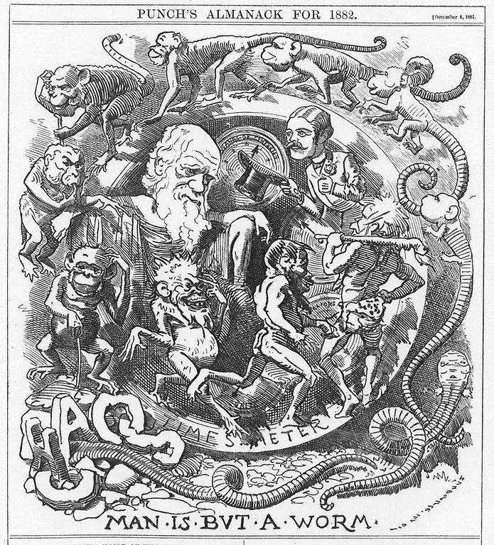 Darwin worm