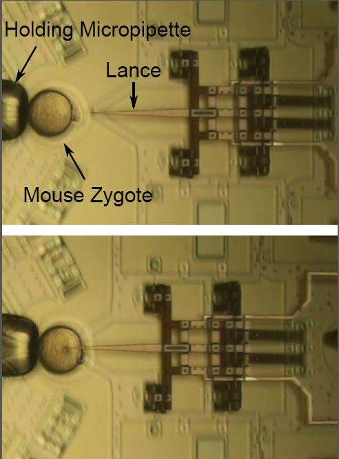 Nano injector III